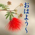 お花でご挨拶(2)
