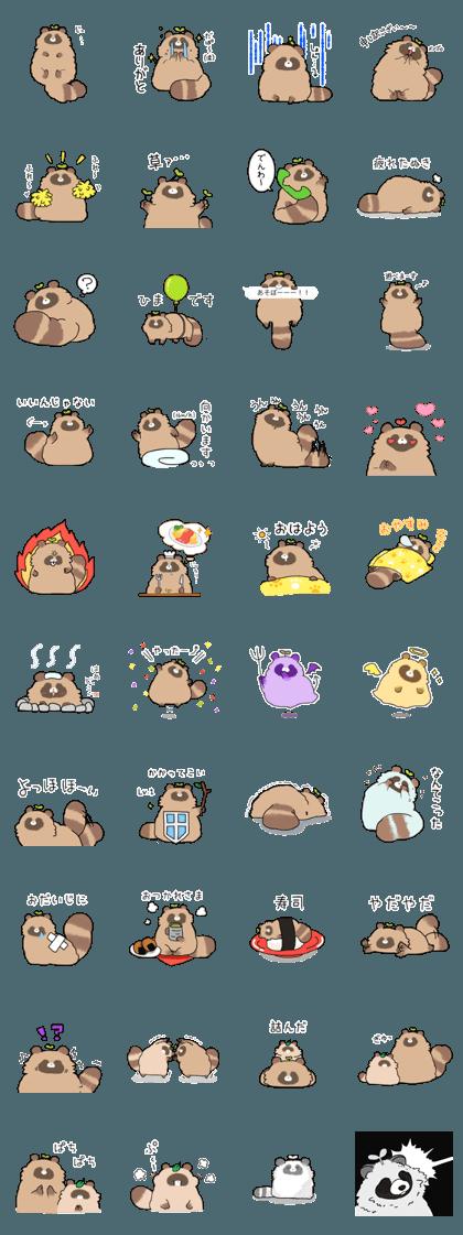 yohohoi raccoon