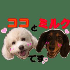 ココミルちゃん by晩ママ