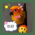 My name is Orange :-)