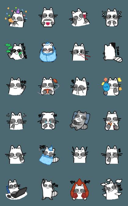 Cute Raccoon kuni