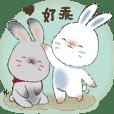 YingYing ang ZhanZhan rabbits (TAIWAN)