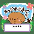 トイプードル【カスタム編】