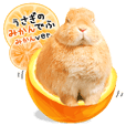 Rabbit Mikan-Mikan-version