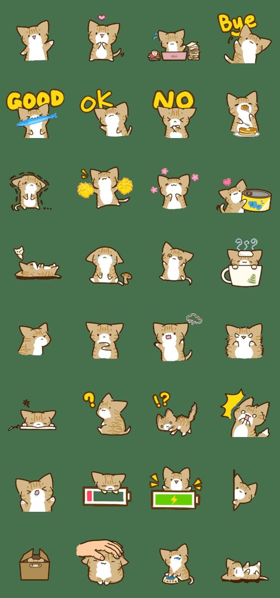「Latte the Kitten」のLINEスタンプ一覧