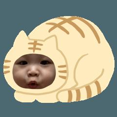 Baby Boy-Lin
