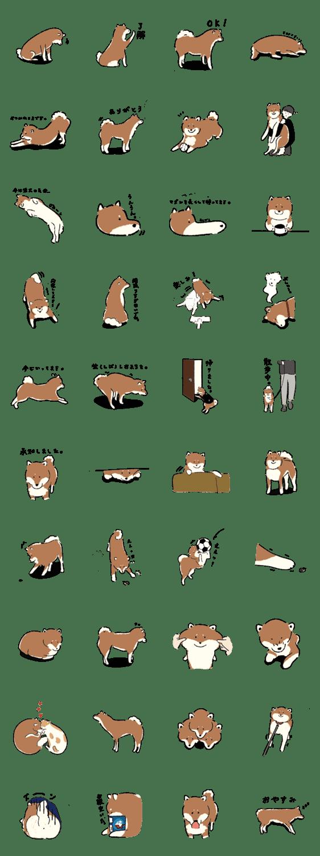 「シンプルな柴犬たち(胡麻柴)」のLINEスタンプ一覧