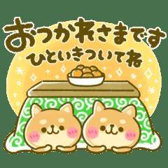 豆柴日和♡冬