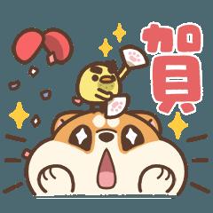 米犬日常 - 聖誕狂歡