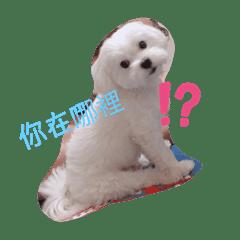 Huaiying_20191110175203