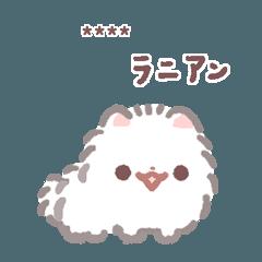 Pomeranian Mochi -custom1-