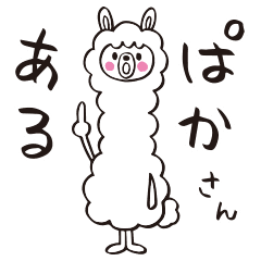 Easy to use daily life for Alpaca San