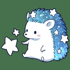 Star Hedgehog