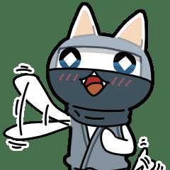 子猫忍者「シロカブ」