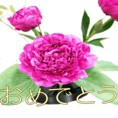 おめでとう&ありがとうをお花とともに