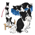 Dog(Papillon) Sticker