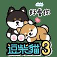 逗柴貓 3-貓狗聯萌隨你填貼圖