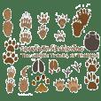 The wildlife Tracks of Thailand