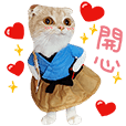 Aoao's Dress Show