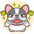 French Bulldog HAN-JI (Sticker I )