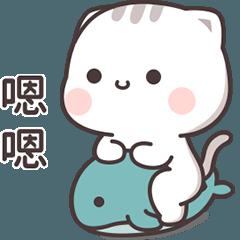 Cutie Cat-Chan 5