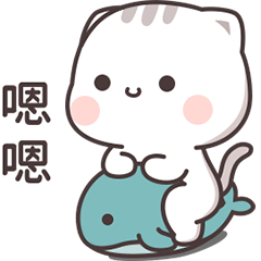 貓小醬 5