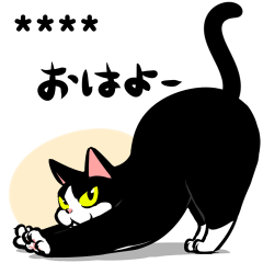 A little fat cat custom