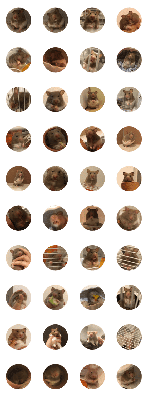 「Kii Phoon The Hamster.」のLINEスタンプ一覧