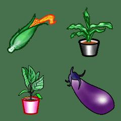 Seedlings and vegetables