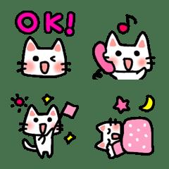 cute cat /
