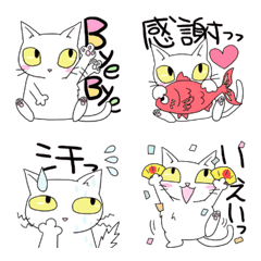 white cat face variation and one phrase