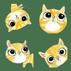 小橘貓 拿鐵拉花 3