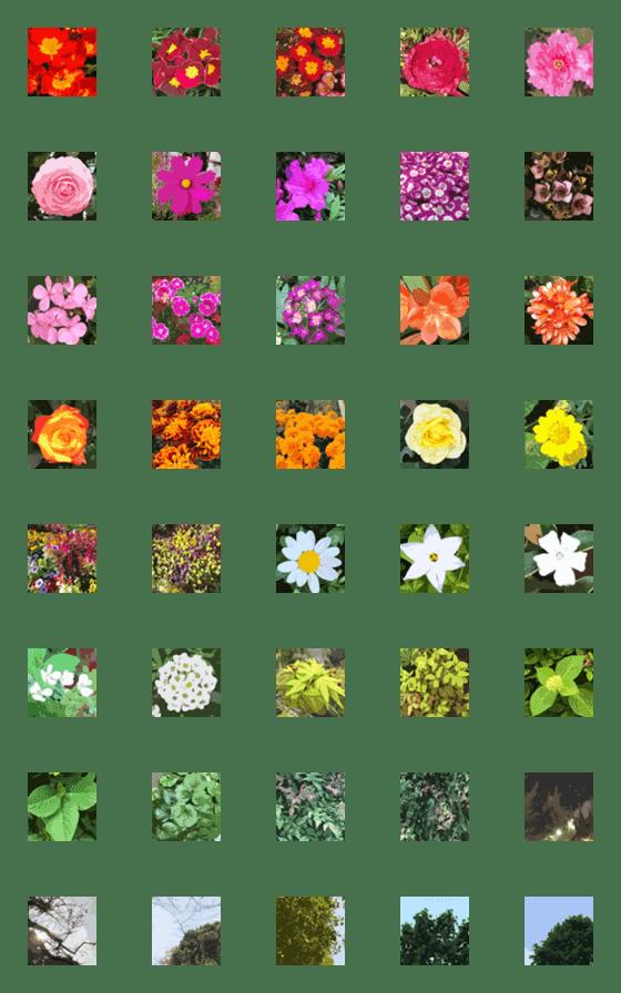 Painting style flower Emoji – LINE Emoji   LINE STORE