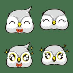 The owl Ruru and nyonyo