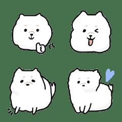 Soft and fluffy dog (Pomeranian)