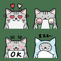 Very cute American shorthair emoji
