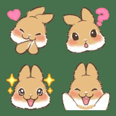 Netherland Dwarf Emoji