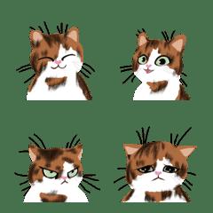 อิโมจิไลน์ FUZZY BRAINED cat expressions