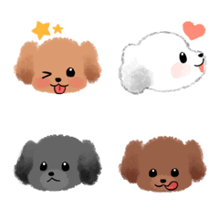 Baby Poodles