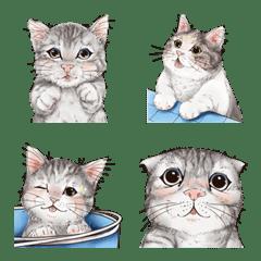 อิโมจิไลน์ ลูกแมวเมียว แสนน่ารัก