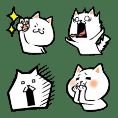 Mochi hoppe cat white