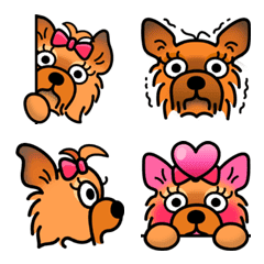 ohmyPET Yorkshire Terrier