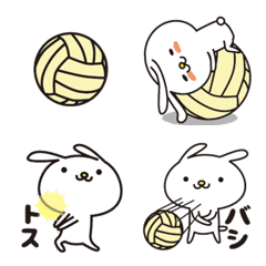 Rabbit and volleyball