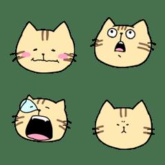 Hengao cat