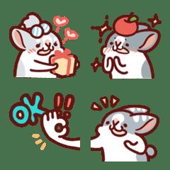 肥兔寶 表情貼 - 可愛日常篇