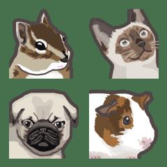 petit animal emoji