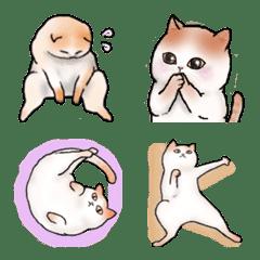 อิโมจิไลน์ free cat emoji
