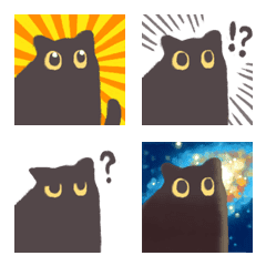 安靜的黑貓