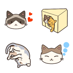 very cute my cat(new)