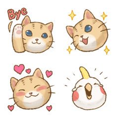 貓咪日和 可愛表情貼